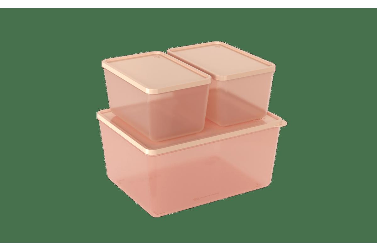 Rosa-Blush-e-Rosa-Blush-Translucido-Coza